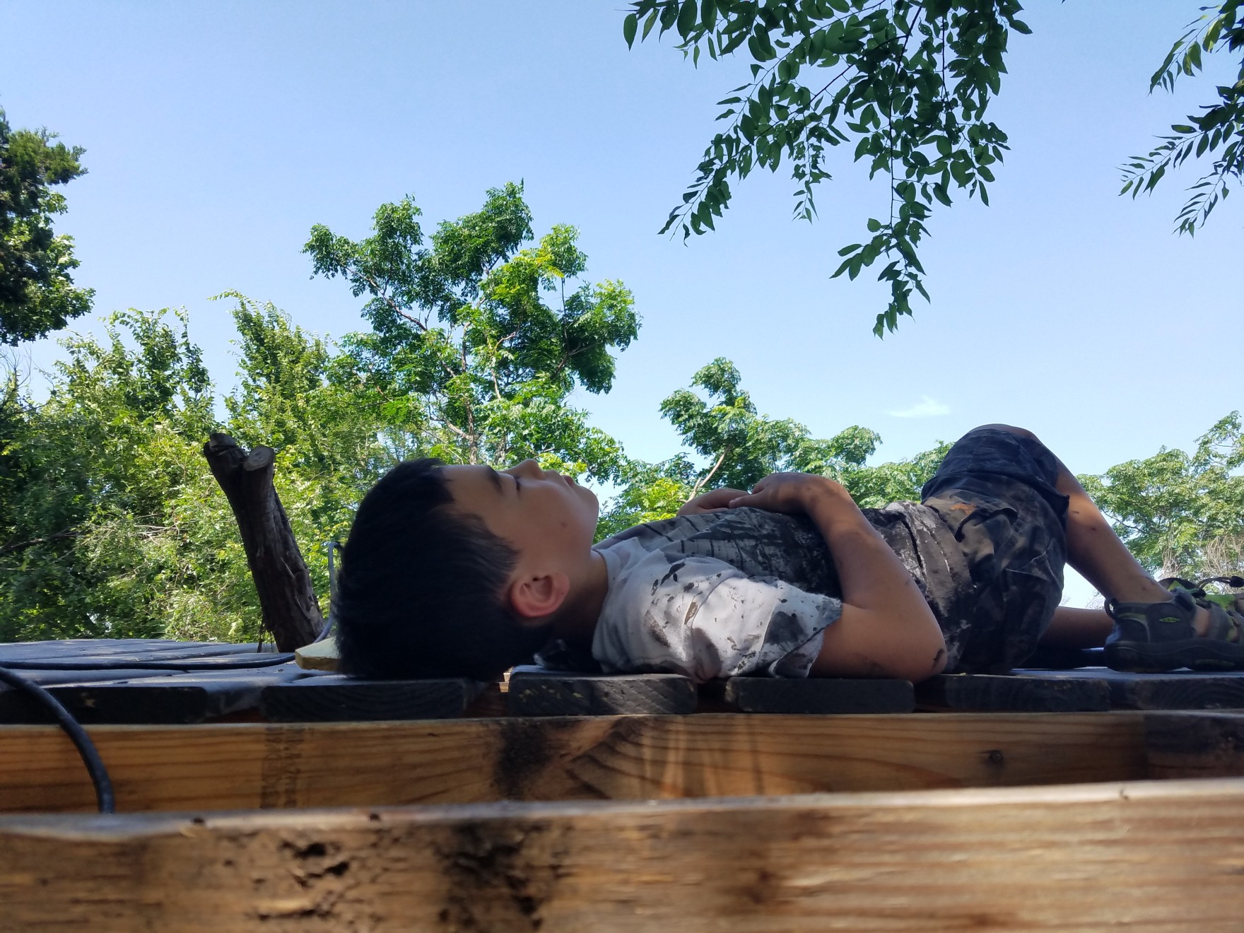 Max taking a nap while painting the new pergola for the treehouse on Gillespie — June 15th, 2016