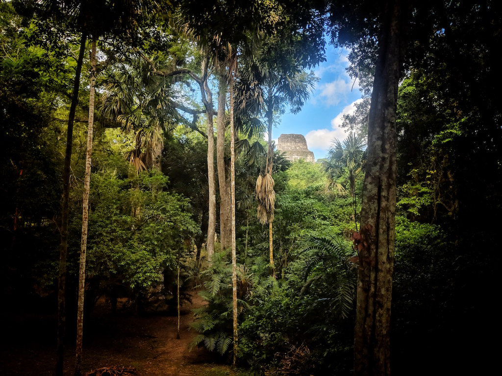 The Lost World of Tikal